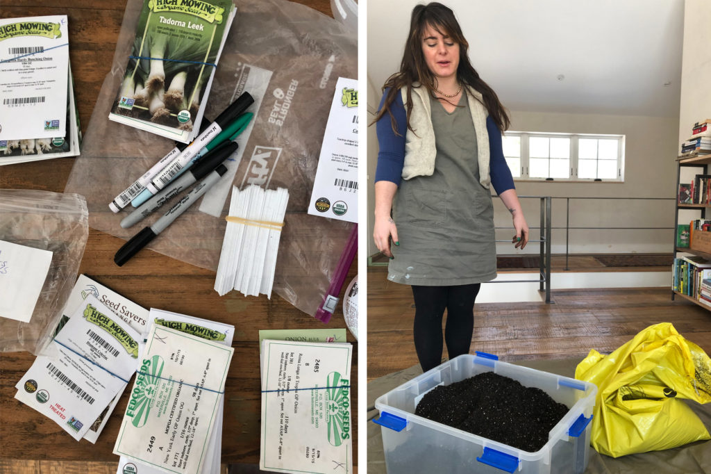Organic seeds and soil for the 2019 garden Maine
