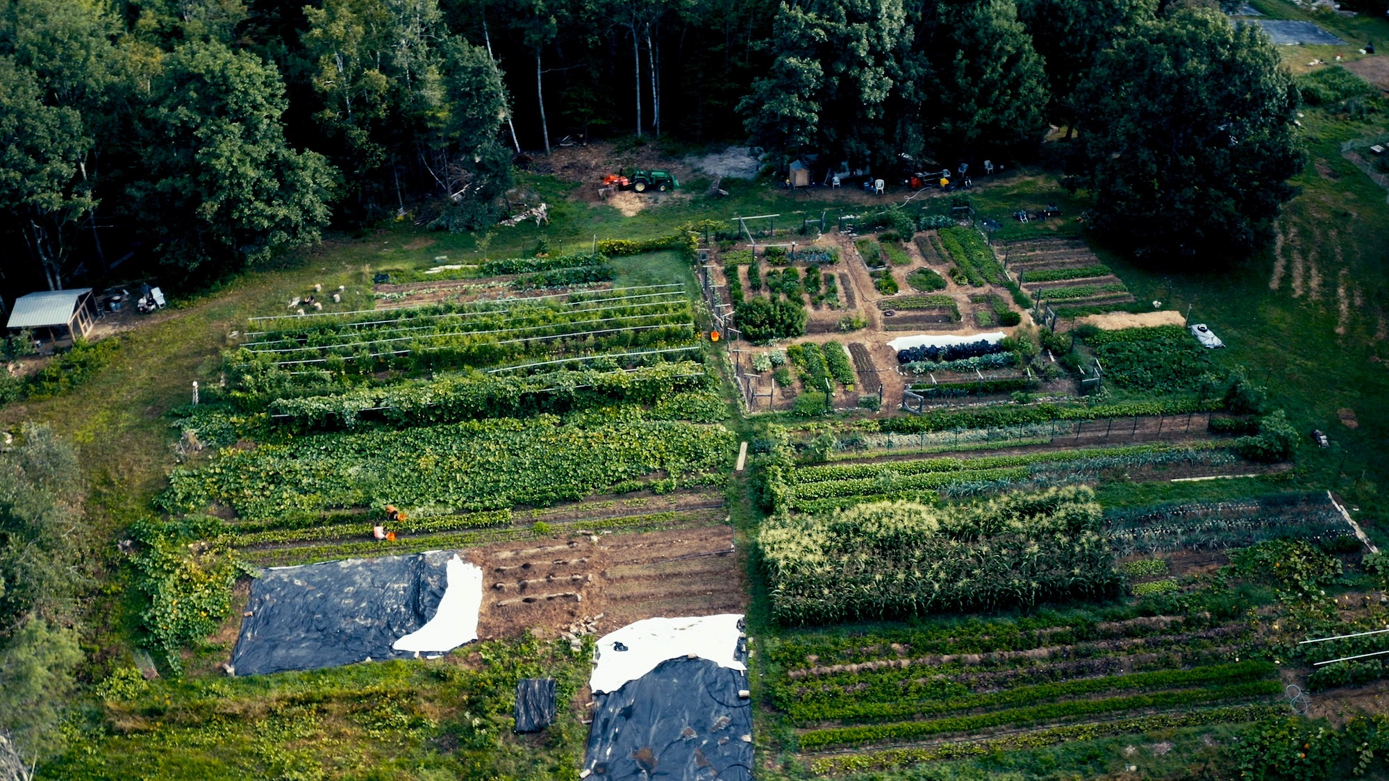 Veggies to Table farm view from above